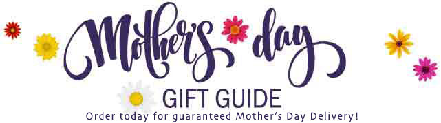 Hope Courage Survivor Gifts for Mom for Mothers Day - Inspirational Gift Giving Ideas